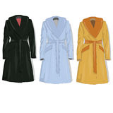 Female coat set. Vector. Royalty Free Stock Images