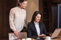 Female colleagues cooperating in an office. Great ambitions. Female young pretty colleagues cooperating in an office and making project while working Stock Images