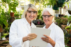 Female colleagues smiling while holding clipboard. Portrait of female colleagues smiling while holding clipboard at greenhouse stock images