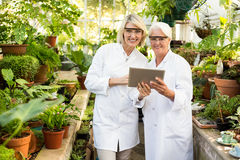 Female colleagues smiling while using digital tablet. Portrait of female colleagues smiling while using digital tablet at greenhouse stock photo