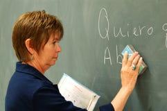 Female College Professor. Erasing material on the blackboard Stock Photos