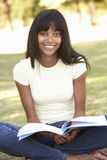 Female College Student Sitting In Park Reading Textbook Stock Photography