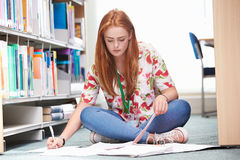 Female College Student Studying In Library Stock Photos