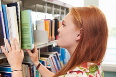 Female College Student Studying In Library Royalty Free Stock Image