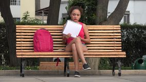 Female College Student Studying On Park Bench. A young Peruvian adult female stock video