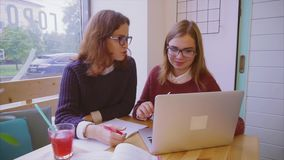 Female college students studies in the cafe two girls friends learning together. Female college students studies in the cafe. Two girls friends learning together stock video footage