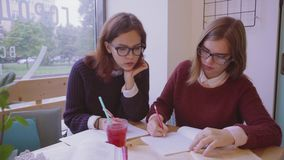 Female college students studies in the cafe two girls friends learning together stock video footage