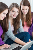 Female college students working on their homework Royalty Free Stock Images