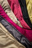 Female, colorful underclothes pants Stock Image