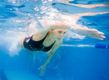 Female competition swimmer royalty free stock photos