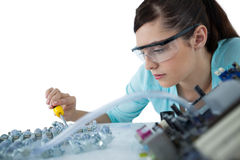 Female computer engineer repairing computer motherboard Royalty Free Stock Images