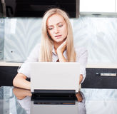 Female with computer Stock Image