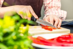 Female cook making fresh shrimp salad in her home cooking, vario. Us vegetables on table, showing her hand cutting red chilis on wooden cutting board Royalty Free Stock Photos