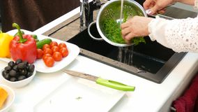Female Cook Washing And Preparing Greenery For Salad stock video
