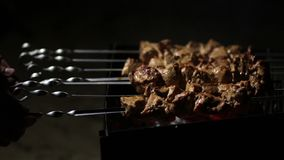 Female cooking meat skewers on the barbecue coals Stock Images