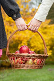 Female couple with basket with apples Royalty Free Stock Photos