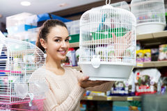 Female customer buying cage for quinea Stock Photography