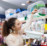 Female customer buying cage for quinea Stock Photo