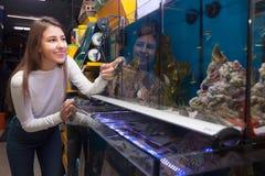 Female customer choosing aquarium fish Royalty Free Stock Photography