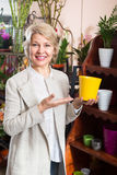 Female customer choosing flower pot Royalty Free Stock Image