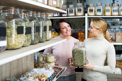 Female customers selecting various herbs. Two smiling female customers selecting various herbs in the store with ecological goods Royalty Free Stock Image