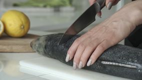 Female cutting fish with a knife in the kitchen. Close up.  stock video footage