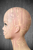Female cyborg head on dark gray background stock images