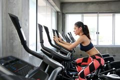 The female is cycling in the gym. Portrait of girl exercising on. Cardio machines in the sport club. Pretty woman body builder working out at the gym. asian stock images