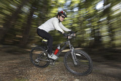 Female cyclist in forest Royalty Free Stock Photo