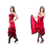 The female dancer dancing spanish dances Royalty Free Stock Photo