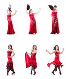 The female dancer dancing spanish dances Royalty Free Stock Image
