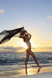 Female dancer standing by the ocean Stock Photos