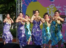 Female Dancers Perform a Hawaiian Dance Royalty Free Stock Images
