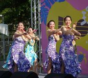 Female Dancers Perform a Hawaiian Dance Royalty Free Stock Image