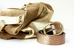 Female Decorative Gold Bag And Belt Stock Images