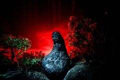 Female demon. Demons coming. Slhouette of devil or monster figure on a background of fire. Horror view. Horror silhouette of scary figure in forest at night Stock Photo