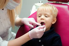 Female dentist examines the teeth of the patient child. child mouth wide open in the dentist`s chair. royalty free stock photos