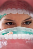Female dentist examining teeth. Stock Photos