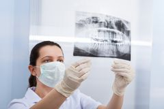 Female dentist looking at dental xray Royalty Free Stock Image
