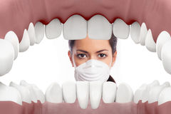 Female dentist looking into mouth royalty free stock images