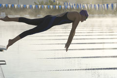 Female Dive Start. In early morning at outdoor pool Stock Image
