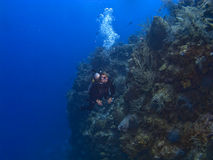 Female Diver off the wall in Cayman Brac Stock Photos