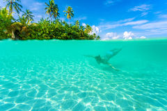 Female diving near exotic island. Swimming under transparent water, relaxation on tropical resort, summer vacation concept Royalty Free Stock Image