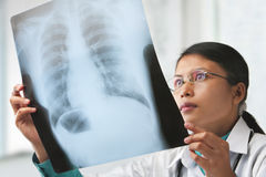 Female doctor checking xray image Royalty Free Stock Photography