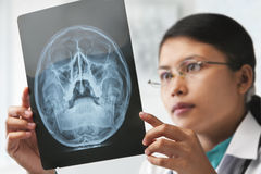 Female doctor checking xray image Stock Photos