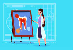 Female Doctor Dentist Looking At Tooth On Board Medical Clinics Worker Stomatology Hospital Royalty Free Stock Image