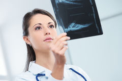Female doctor examing an x-ray Stock Photos