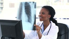 Female doctor examining a chest Xray Royalty Free Stock Image