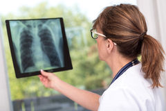 Female doctor examining x-ray report. In medical office royalty free stock photography