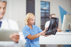 Female doctor examining X-ray Stock Photography